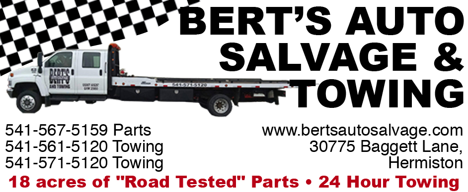 Berts Auto Salvage (84)