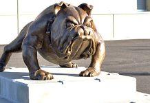Bulldogs Beat Liberty
