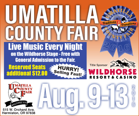 Union County Fair ad 1(101)
