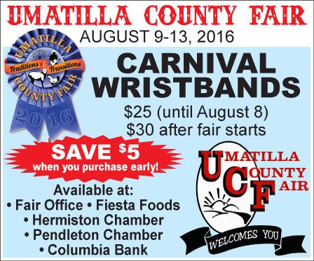 Union County Fair ad 2(102)