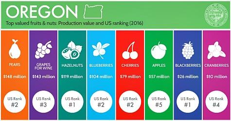 Fruit Stats