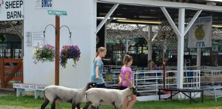 2014 Umatilla County Fair