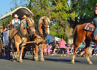 2013 Umatilla County Fair Parade