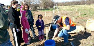 Oxbow Tree Planting