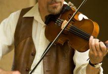 Fiddler